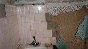 Дератизация домов и помещений